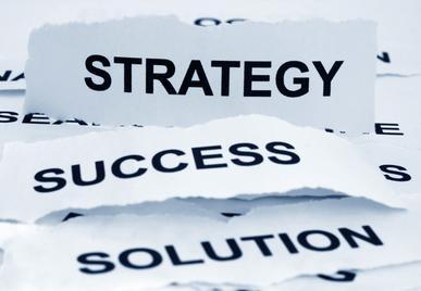 Conceperea si implementarea strategiei de dezvoltare a afacerii